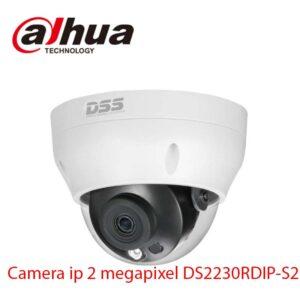 Camera ip 2 megapixel DS2230RDIP-S2